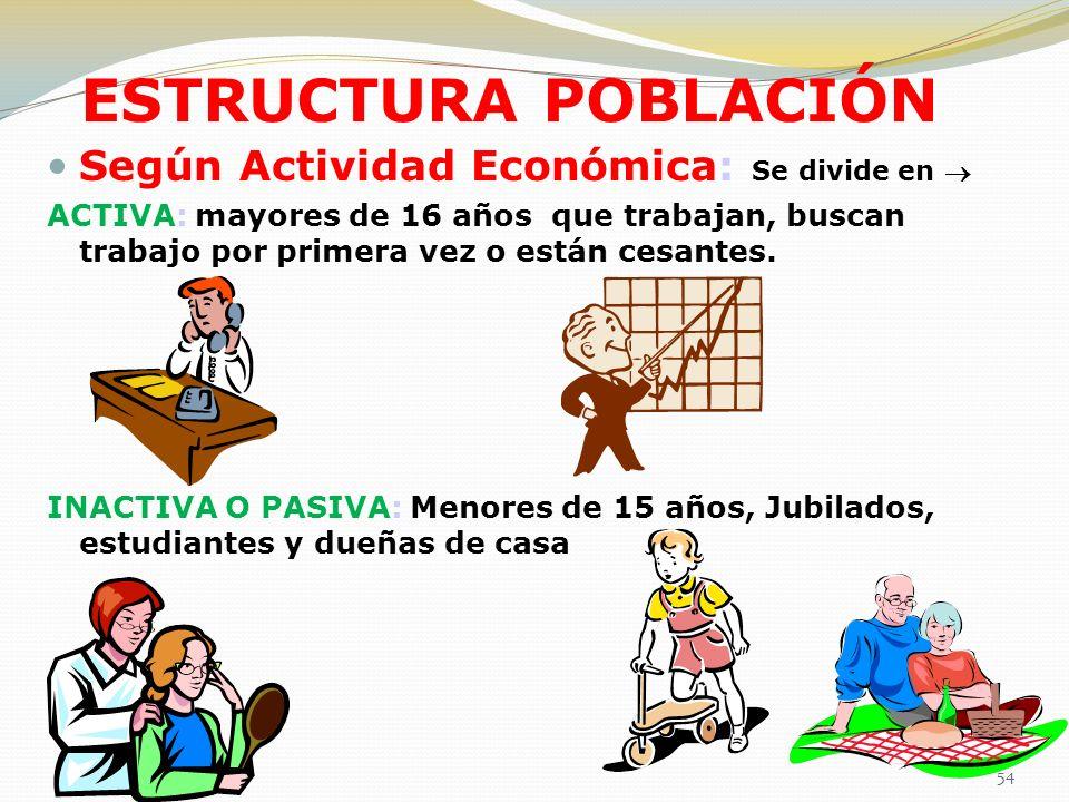 ESTRUCTURA POBLACIÓN Según Actividad Económica: Se divide en 