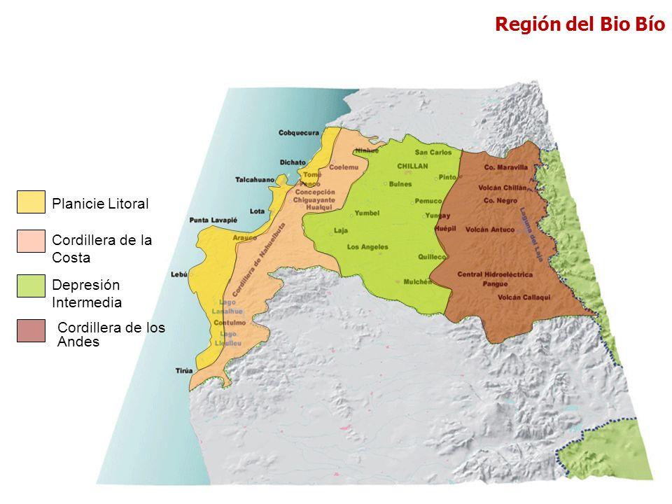 Región del Bio Bío Planicie Litoral Cordillera de la Costa