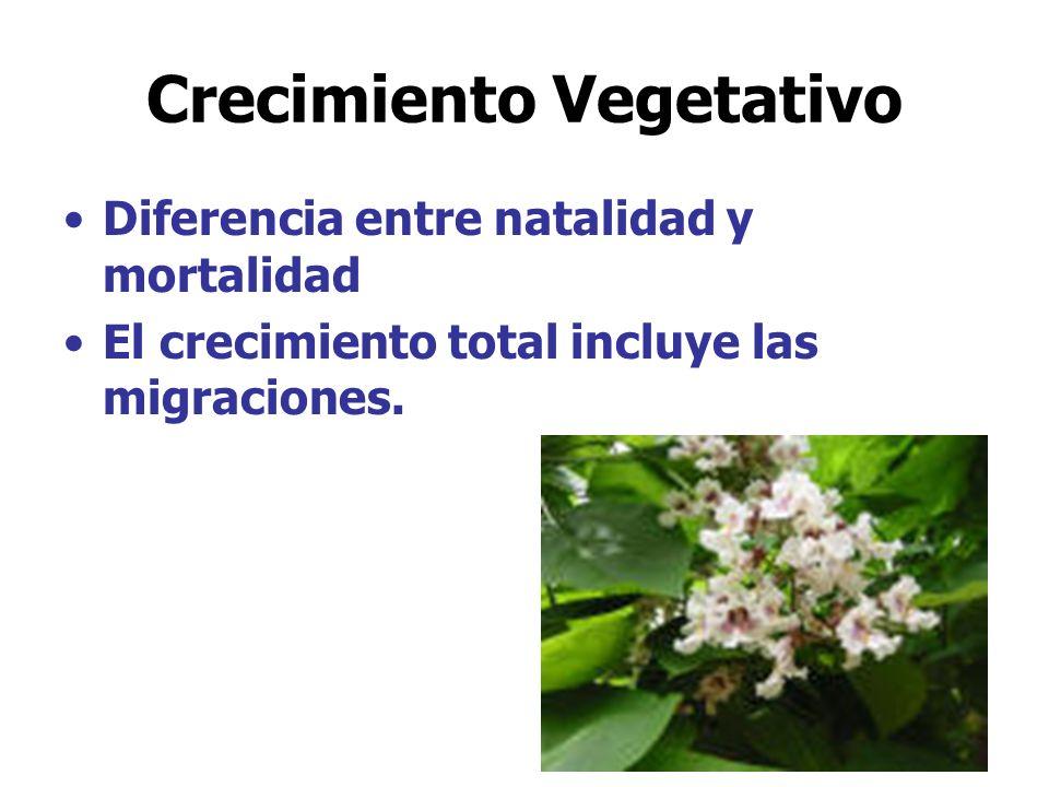 Crecimiento Vegetativo