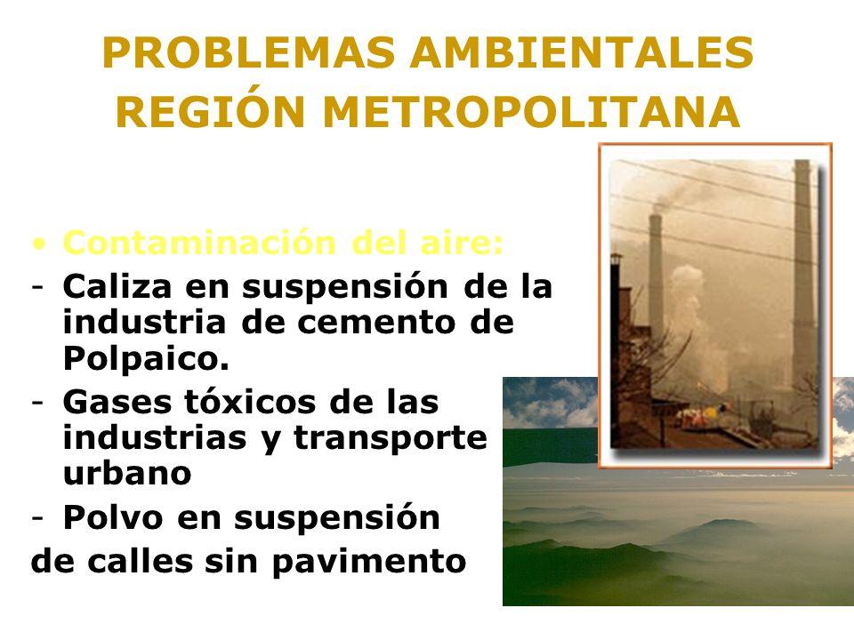 PROBLEMAS AMBIENTALES REGIÓN METROPOLITANA