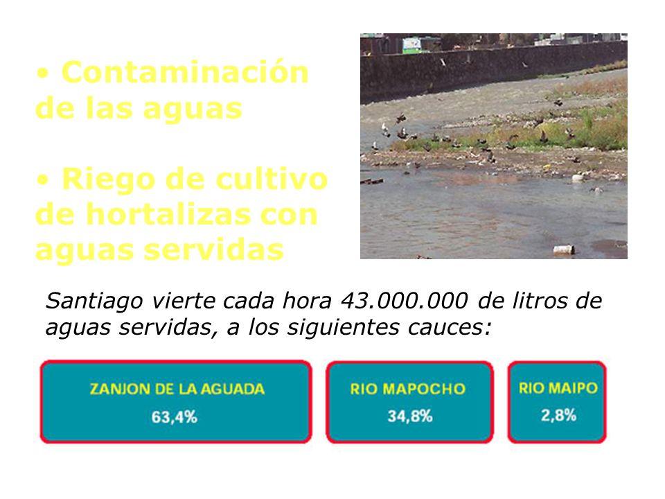 Contaminación de las aguas Riego de cultivo de hortalizas con