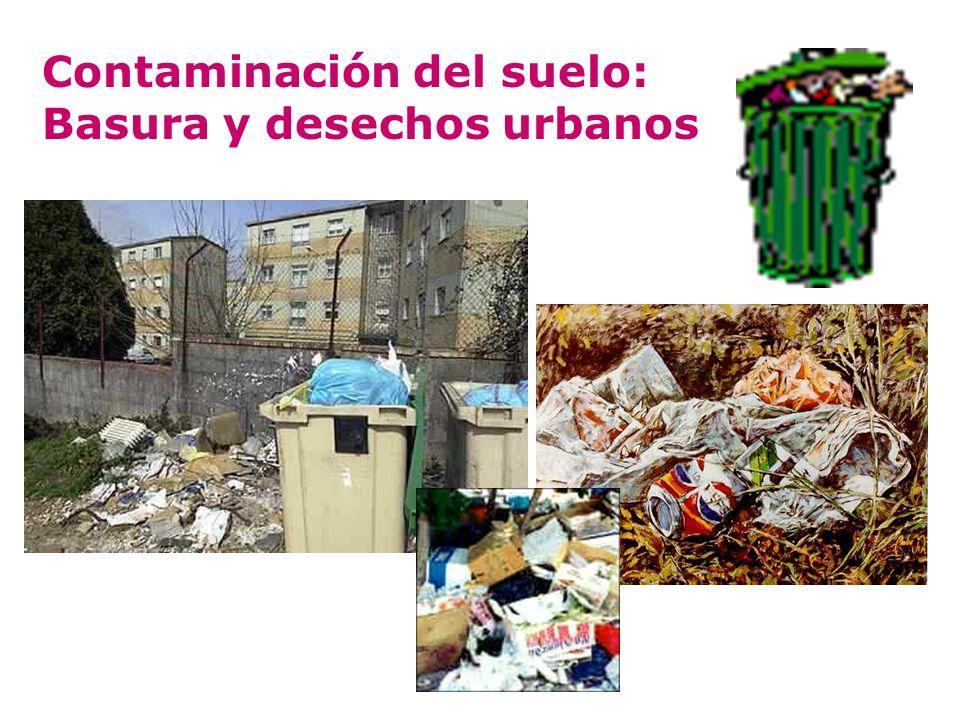 Contaminación del suelo: