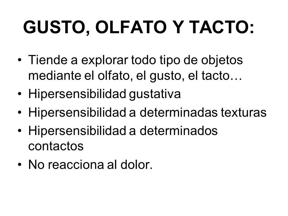 GUSTO, OLFATO Y TACTO: Tiende a explorar todo tipo de objetos mediante el olfato, el gusto, el tacto…