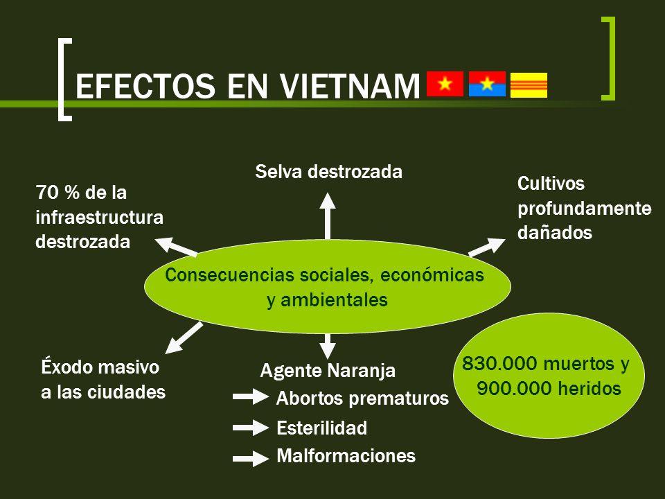 Consecuencias sociales, económicas