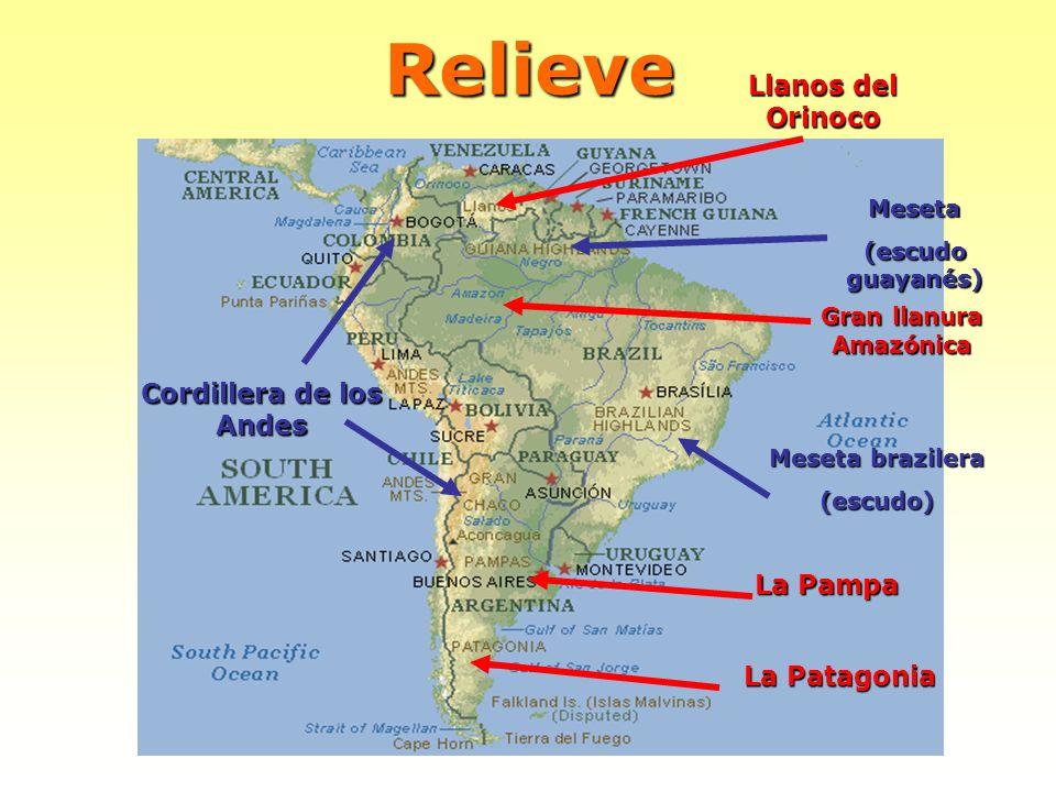 Gran llanura Amazónica Cordillera de los Andes