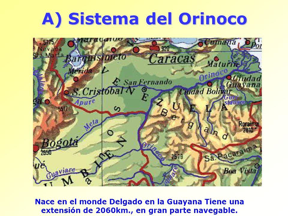 A) Sistema del OrinocoNace en el monde Delgado en la Guayana Tiene una extensión de 2060km., en gran parte navegable.