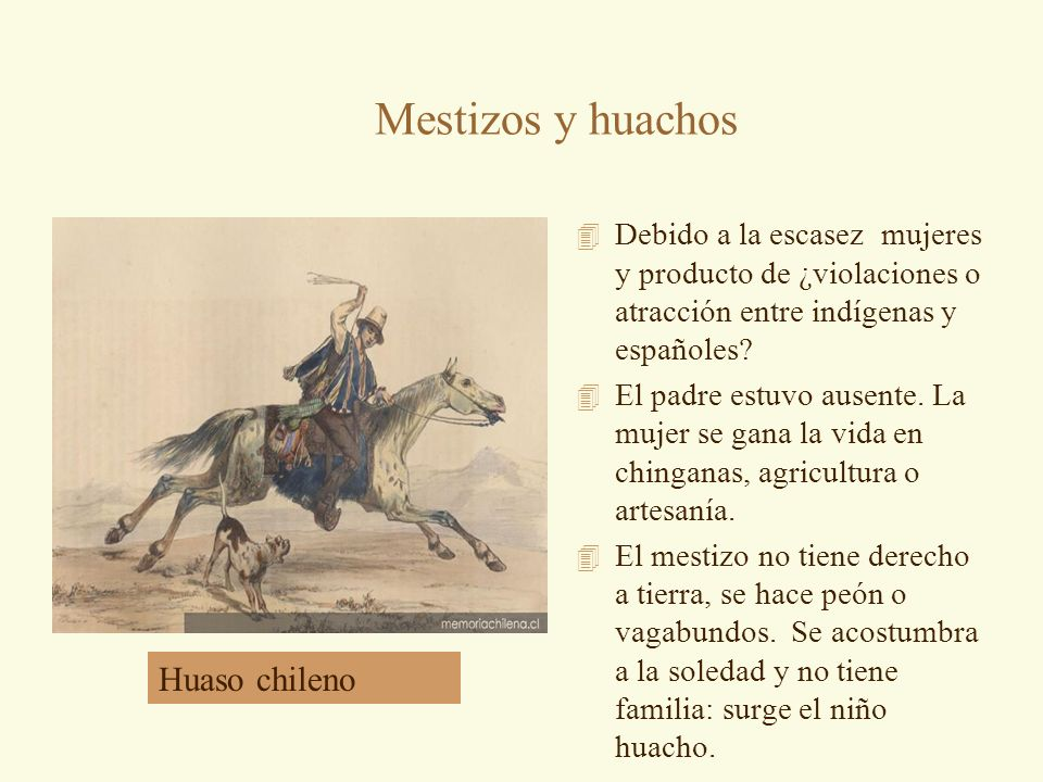 Mestizos y huachos Huaso chileno