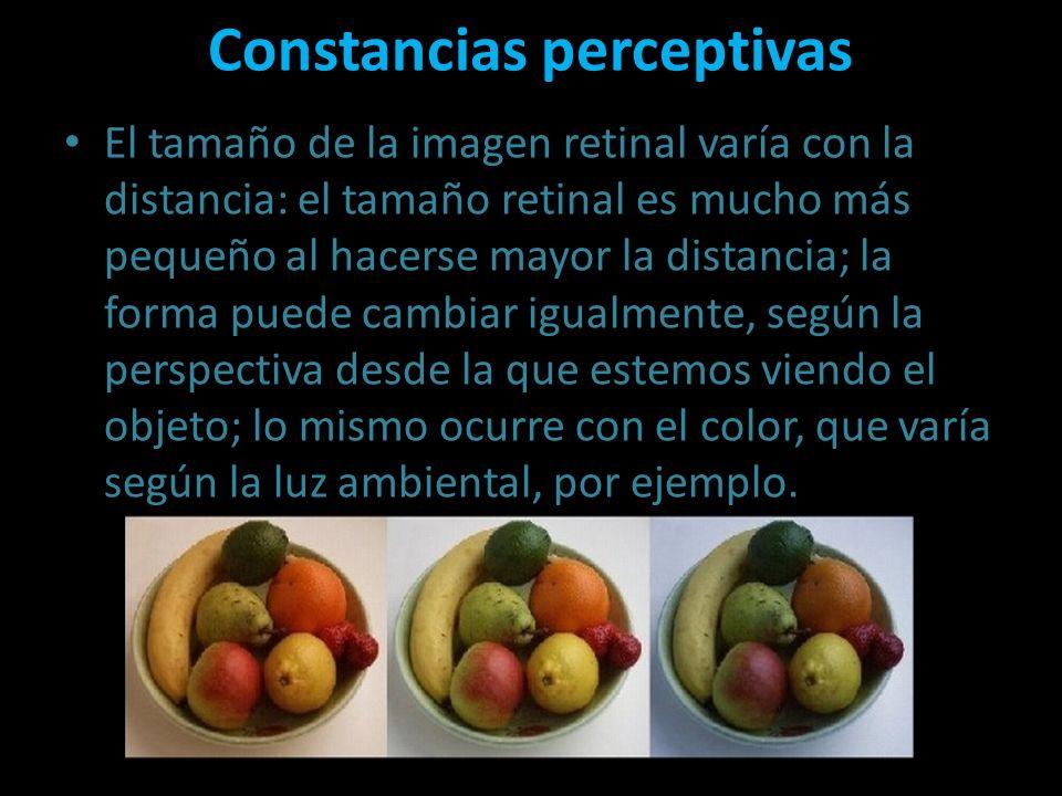 Constancias perceptivas