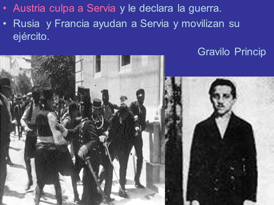 Austria culpa a Servia y le declara la guerra.
