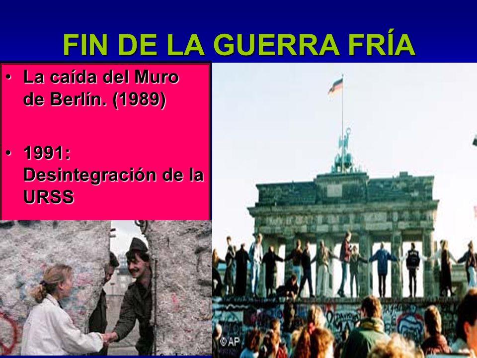 FIN DE LA GUERRA FRÍA La caída del Muro de Berlín. (1989)
