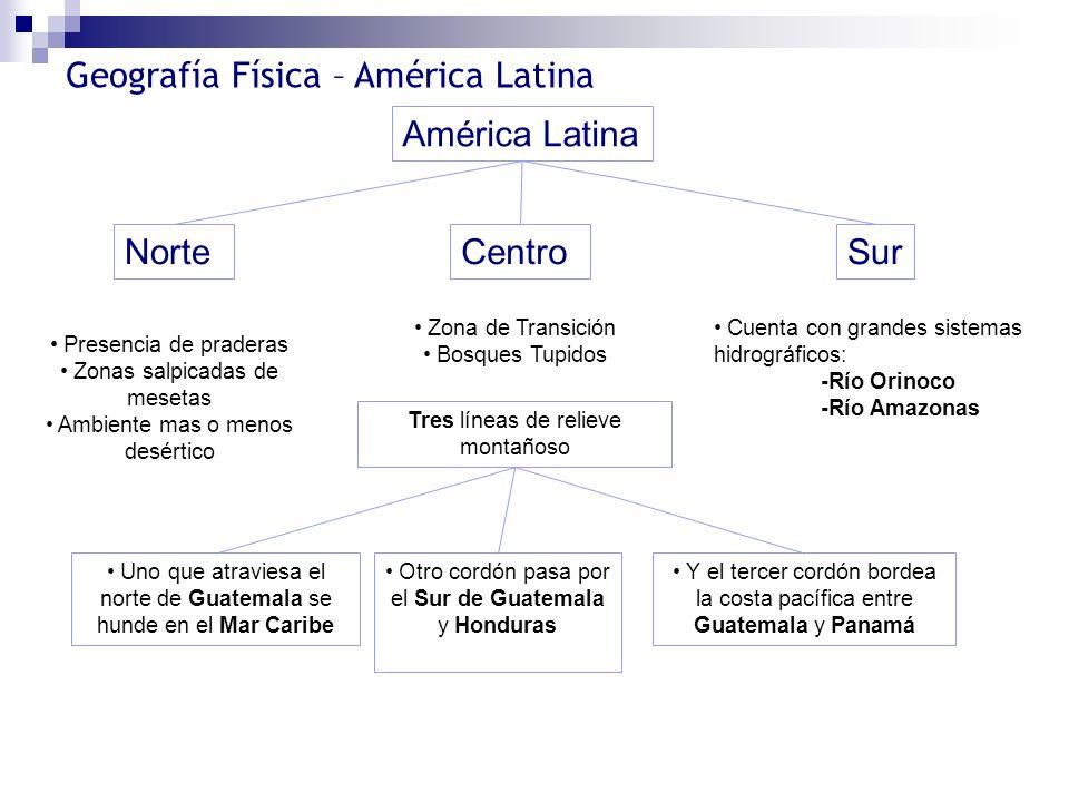 América Latina Norte Centro Sur Zona de Transición Bosques Tupidos