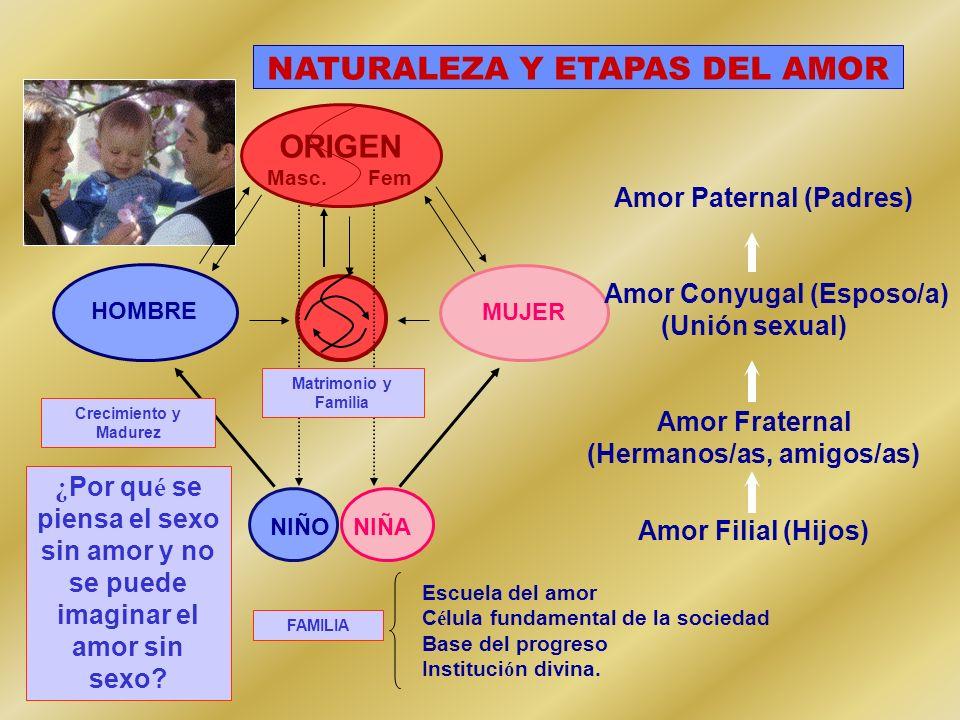 NATURALEZA Y ETAPAS DEL AMOR