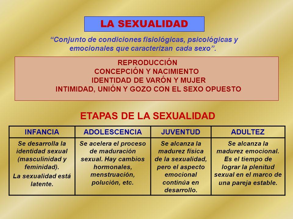 ETAPAS DE LA SEXUALIDAD