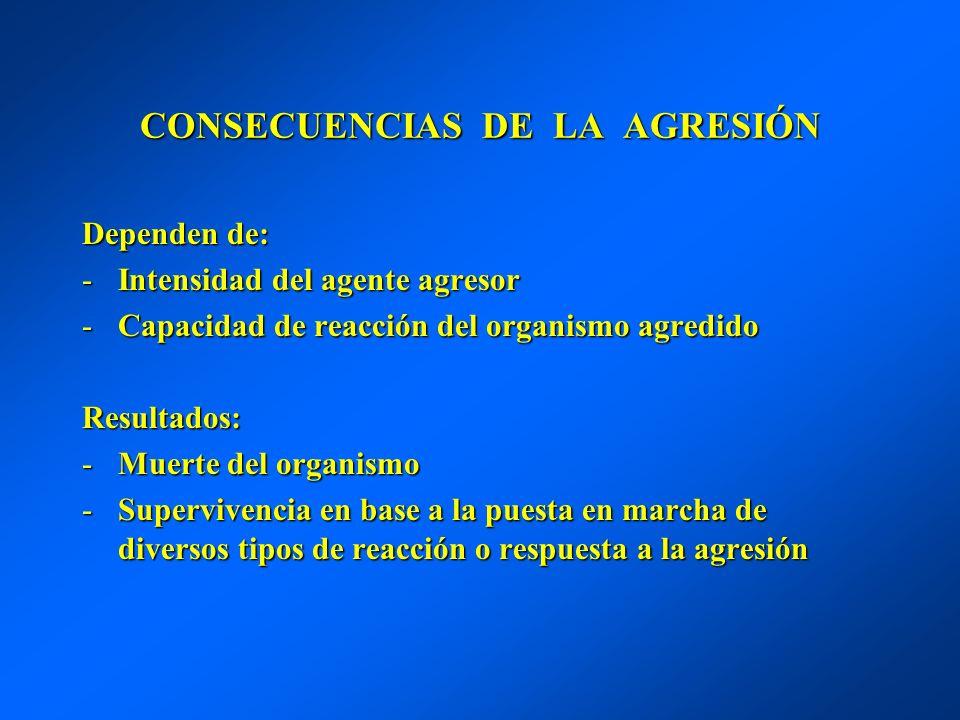 CONSECUENCIAS DE LA AGRESIÓN