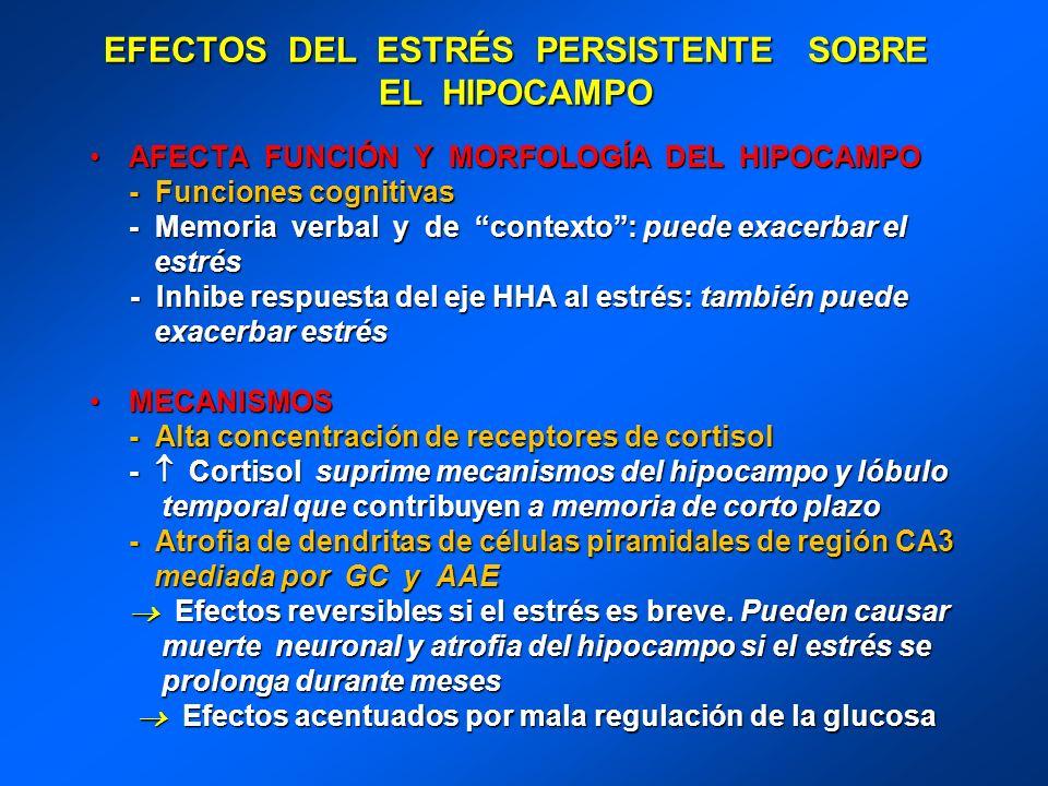 EFECTOS DEL ESTRÉS PERSISTENTE SOBRE EL HIPOCAMPO