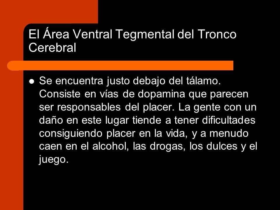 El Área Ventral Tegmental del Tronco Cerebral