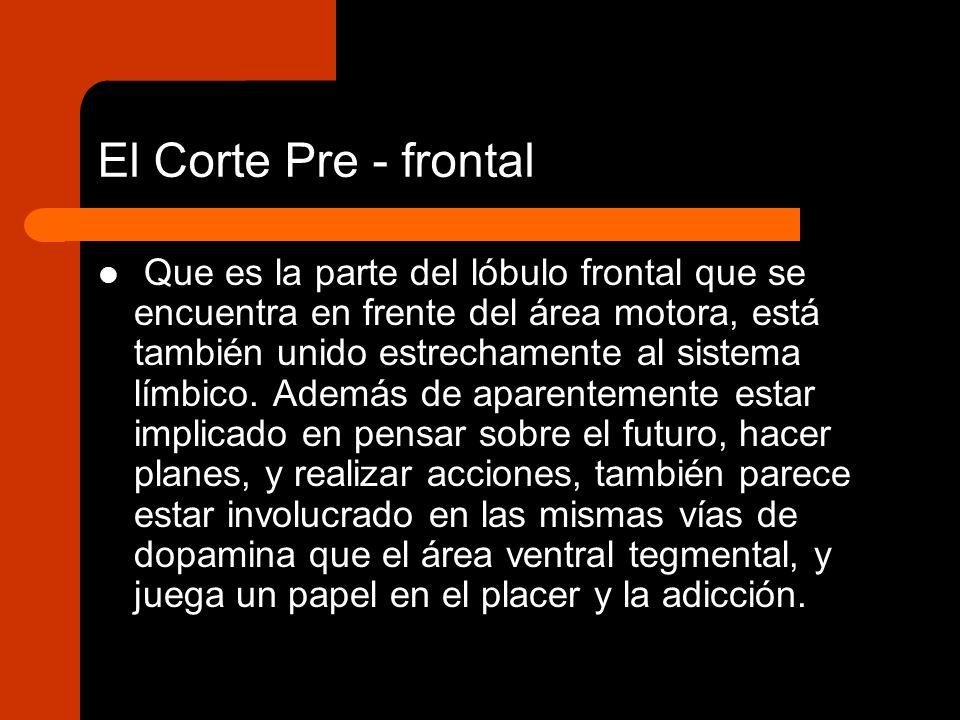 El Corte Pre - frontal