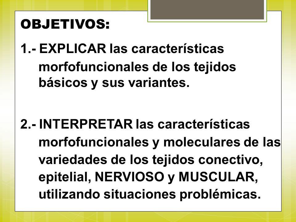 OBJETIVOS: 1.- EXPLICAR las características. morfofuncionales de los tejidos. básicos y sus variantes.