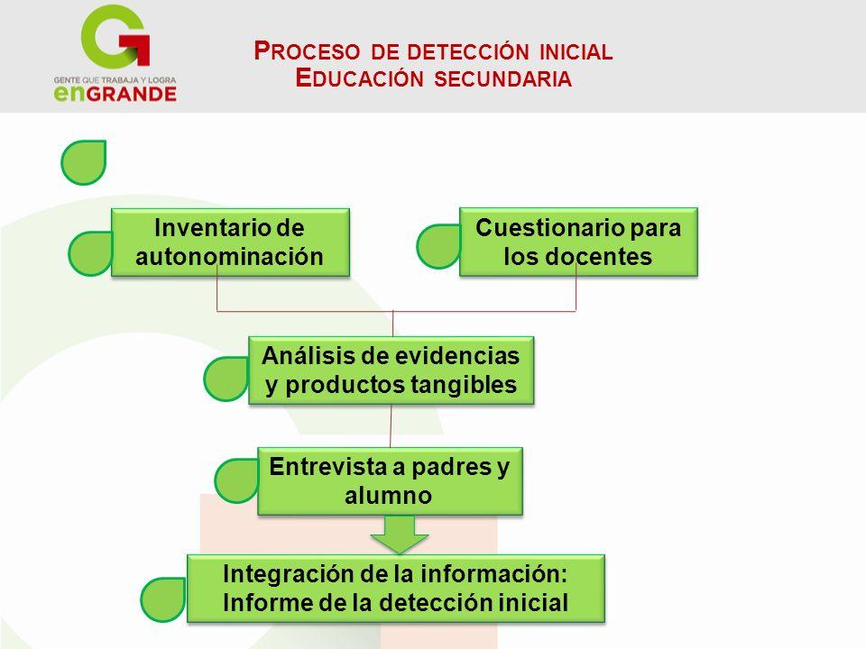 Proceso de detección inicial Educación secundaria
