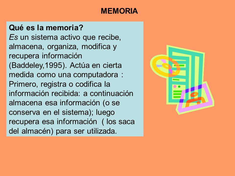 MEMORIA Qué es la memoria