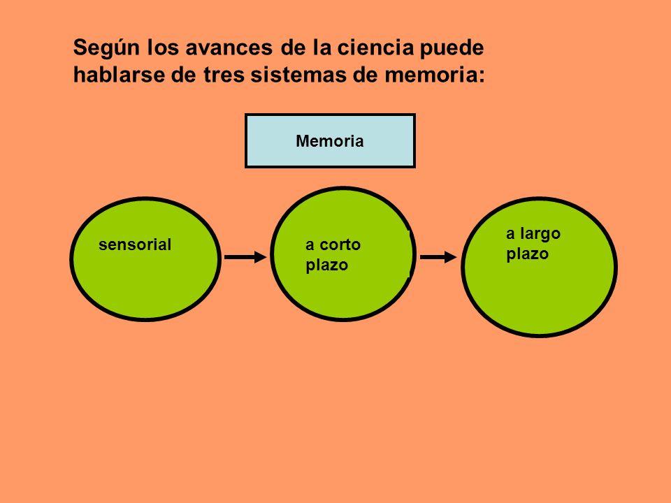Según los avances de la ciencia puede hablarse de tres sistemas de memoria:
