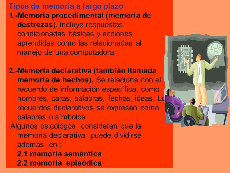 Tipos de memoria a largo plazo