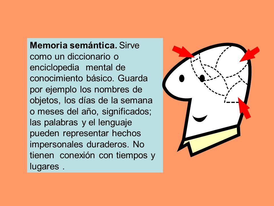 Memoria semántica. Sirve como un diccionario o enciclopedia mental de conocimiento básico.