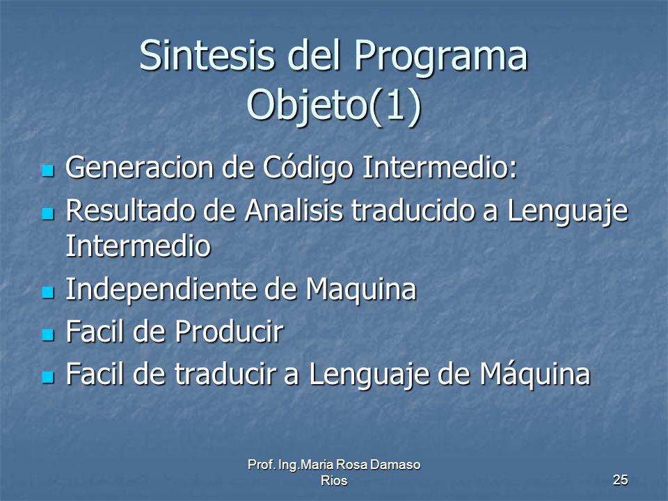 Sintesis del Programa Objeto(1)