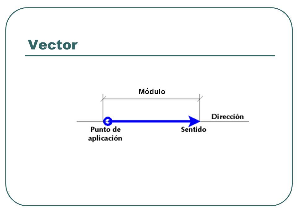 Vector Módulo