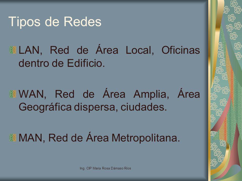 Ing. CIP Maria Rosa Dámaso Ríos