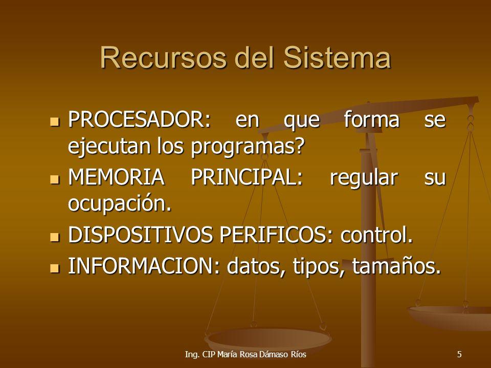 Ing. CIP María Rosa Dámaso Ríos
