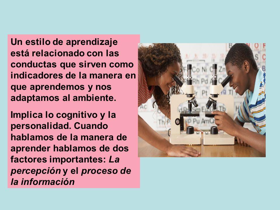 Un estilo de aprendizaje está relacionado con las conductas que sirven como indicadores de la manera en que aprendemos y nos adaptamos al ambiente.