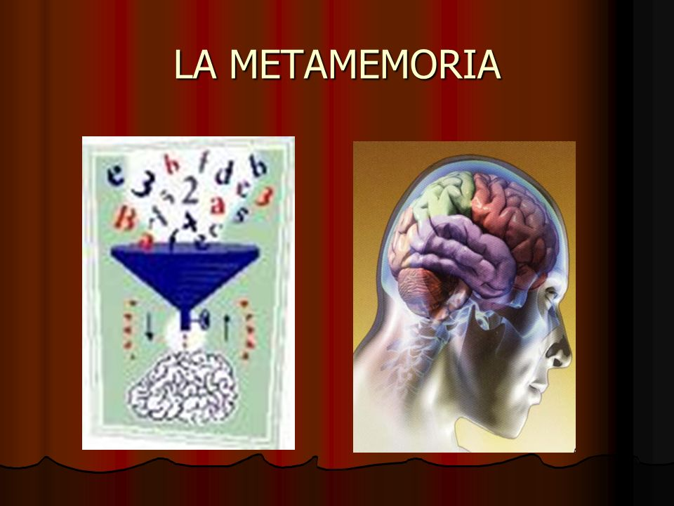 LA METAMEMORIA
