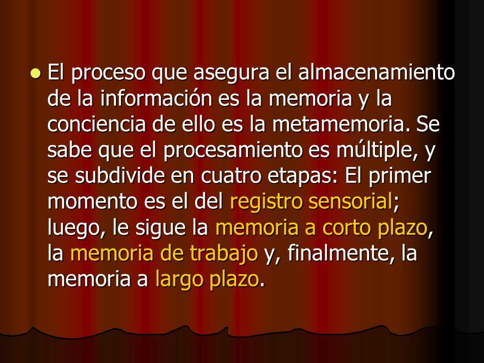 El proceso que asegura el almacenamiento de la información es la memoria y la conciencia de ello es la metamemoria.