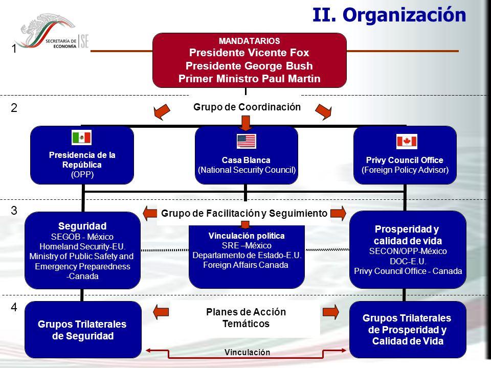 II. Organización Grupo de Coordinación