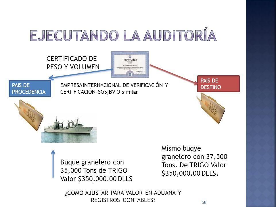 Ejecutando la auditoría