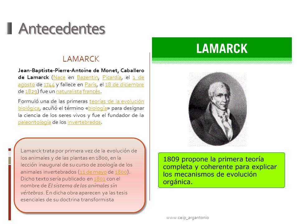 Antecedentes LAMARCK.