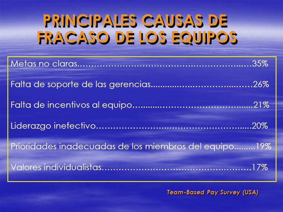 PRINCIPALES CAUSAS DE FRACASO DE LOS EQUIPOS