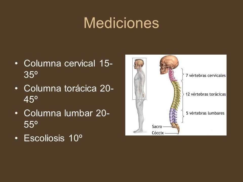 Mediciones Columna cervical 15-35º Columna torácica 20-45º