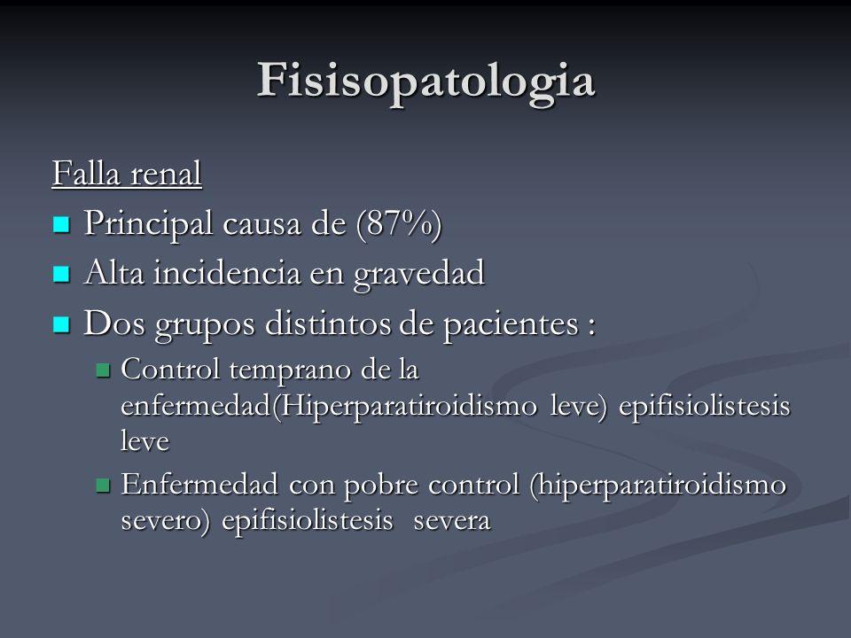 Fisisopatologia Falla renal Principal causa de (87%)