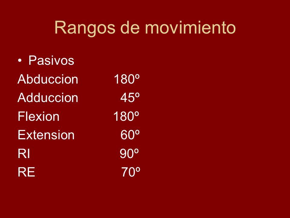 Rangos de movimiento Pasivos Abduccion 180º Adduccion 45º Flexion 180º