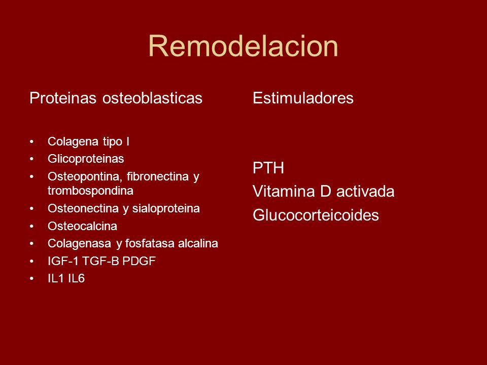 Remodelacion Proteinas osteoblasticas Estimuladores PTH