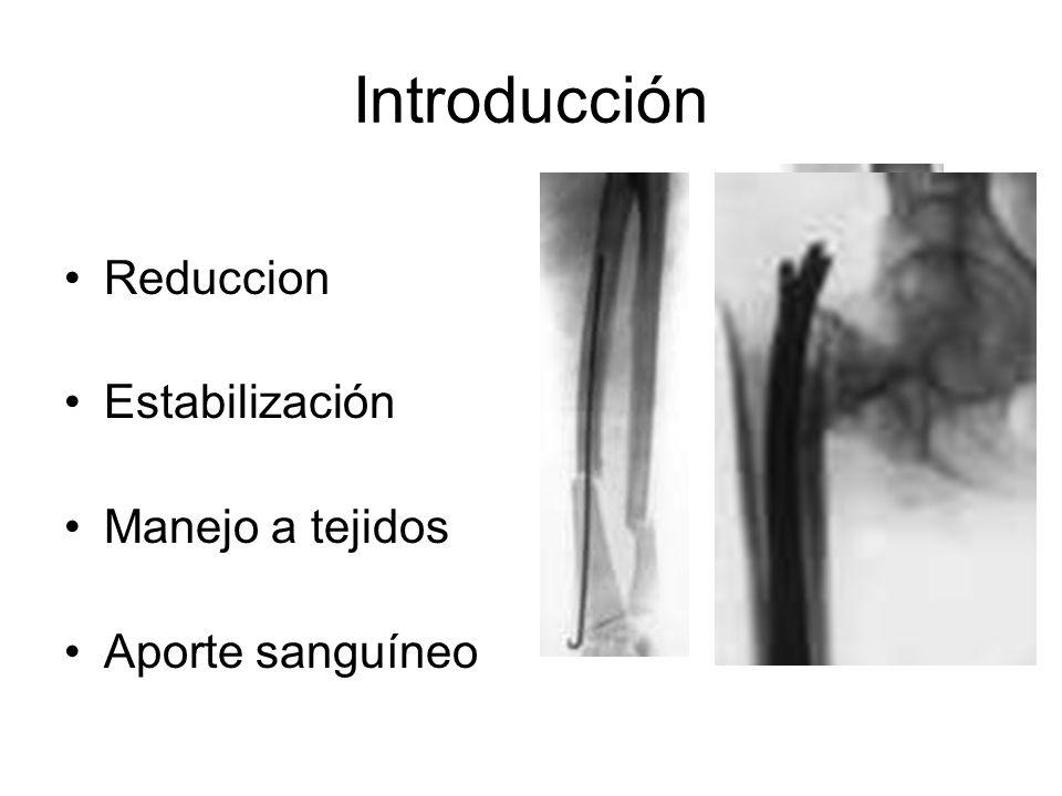 Introducción Reduccion Estabilización Manejo a tejidos