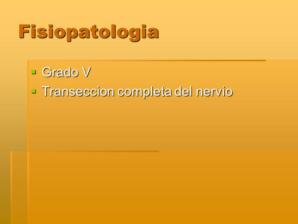 Fisiopatologia Grado V Transeccion completa del nervio