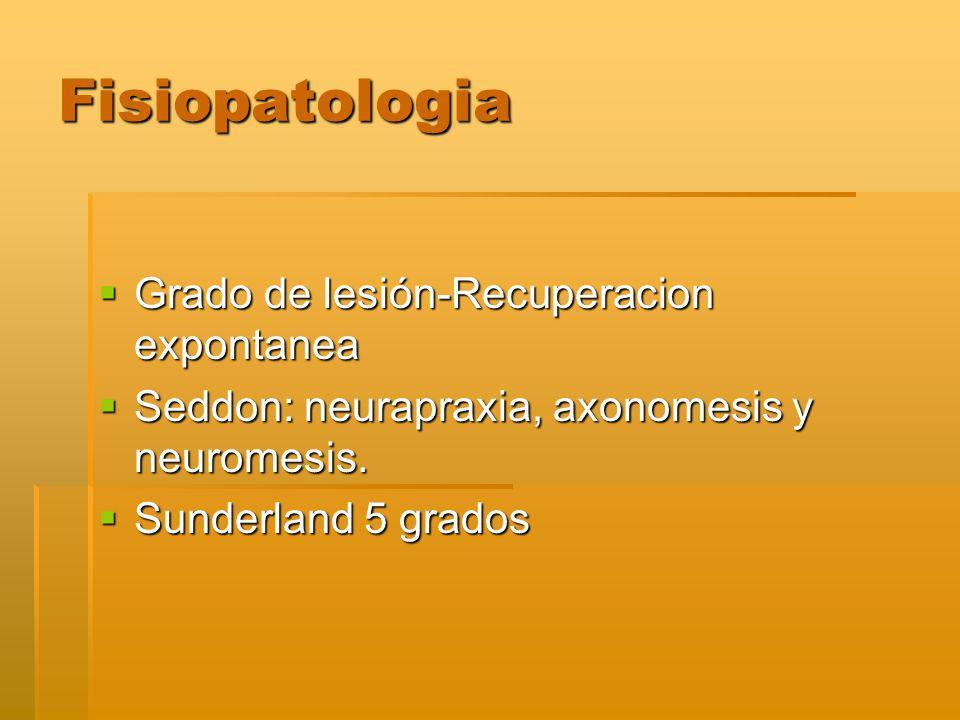 Fisiopatologia Grado de lesión-Recuperacion expontanea