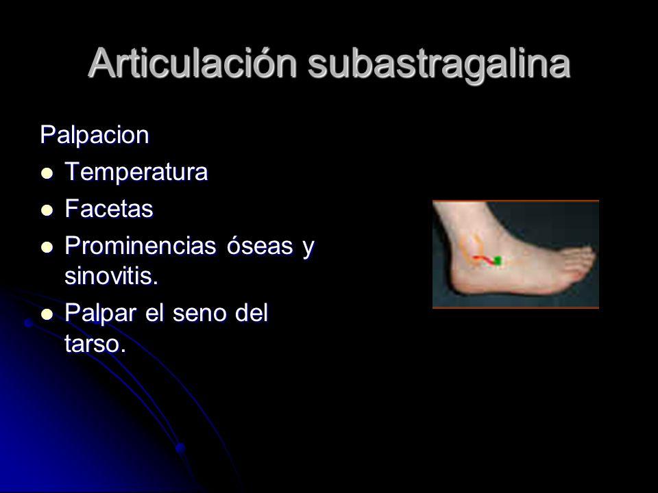 Articulación subastragalina
