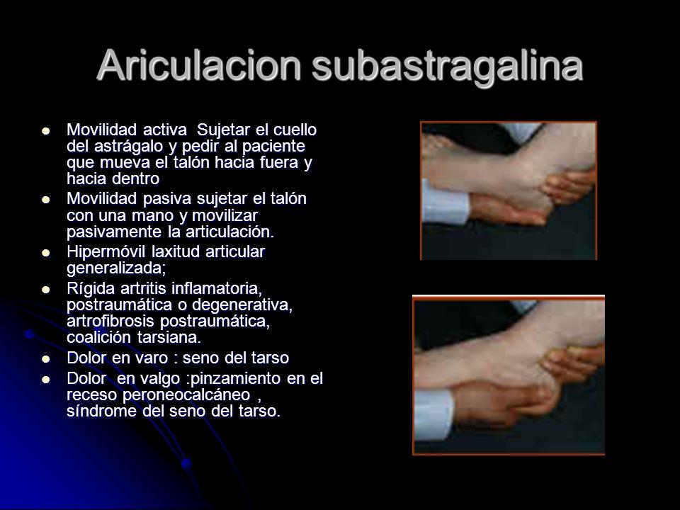 Ariculacion subastragalina