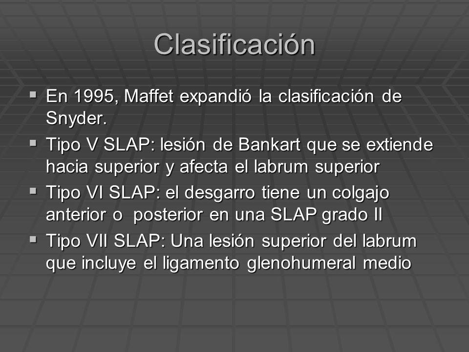 Clasificación En 1995, Maffet expandió la clasificación de Snyder.