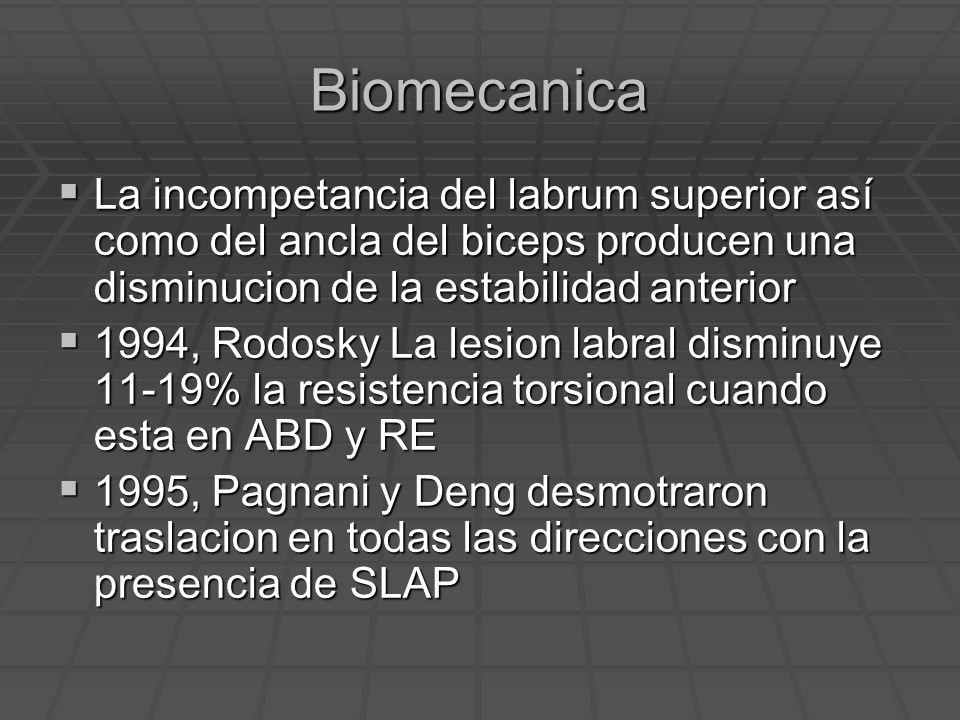 Biomecanica La incompetancia del labrum superior así como del ancla del biceps producen una disminucion de la estabilidad anterior.