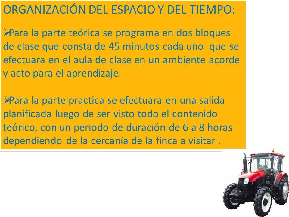ORGANIZACIÓN DEL ESPACIO Y DEL TIEMPO: